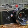 Photos: オーストリッチ貼りのカメラ