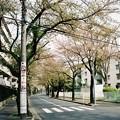 写真: FH000003