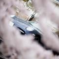 写真: photo-2366