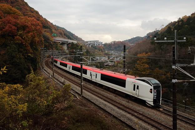 E259 成田エクスプレス 10号