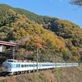 写真: 189系M50編成ホリデー快速富士山