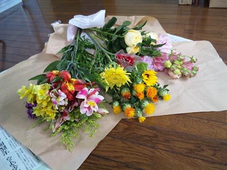 お花は、最大の癒しかな~特...