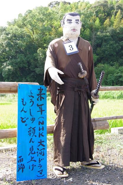山田の案山子 b