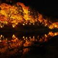 香嵐渓 水鏡