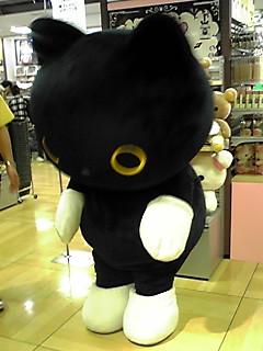 写真: 阿倍野のロフトに、くつしたにゃんこ!