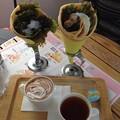 Photos: ツナサラダ、ハムエッグサラダのクレープ