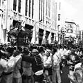 新宿 神輿