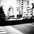 横断歩道の意味