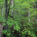 140518-23東北ツーリング・十和田湖・五両の滝