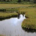 140828-77北海道ツーリング・神仙沼・神仙沼手前の小さな沼