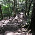 170929-96高尾山・6号路・最初は階段の下り