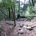 170929-97高尾山・6号路・最初は階段の下り