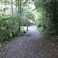 170929-108高尾山・6号路・舗装道路が見えてきました