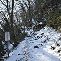 写真: 100116-24大岳山・馬頭刈尾根 滑落注意