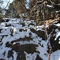 写真: 100116-25大岳山・馬頭刈尾根 鎖つき登山道