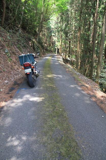 Photos: 110509-16四国・中国地方ロングツーリング・国道439号