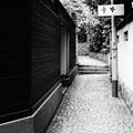 写真: 神楽坂ー2