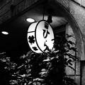 Photos: ひら