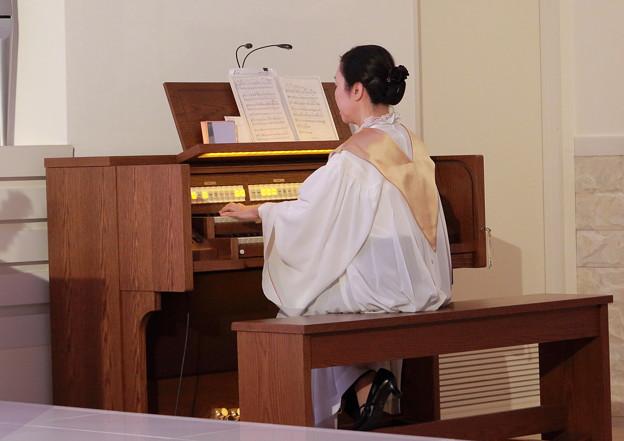 教会のオルガン奏者
