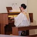 Photos: 教会のオルガン奏者
