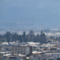 写真: 飯盛山から見た鶴ヶ城1