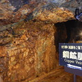 写真: 尾去沢鉱山 坑道内部1