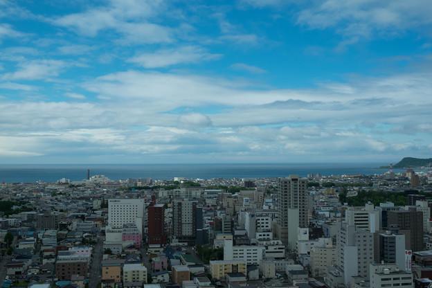 五稜郭タワーからの眺望