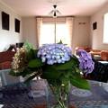 写真: 食卓テーブルに紫陽花