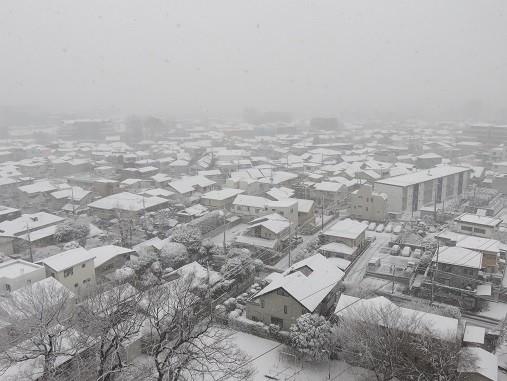 積雪(2018年1月22日14:56撮影、さいたま市浦和区にて)