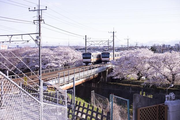 写真: 双子電車