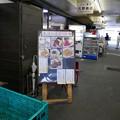 Photos: たらふく@船橋市場2