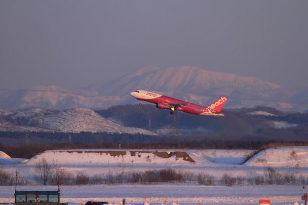 A320 夕陽に映える