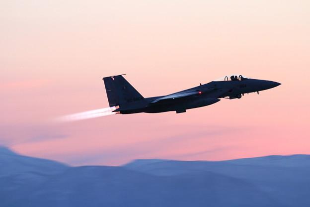Photos: F-15J 62-8864 さくら色の空へ