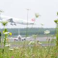 Photos: Airfield (2)