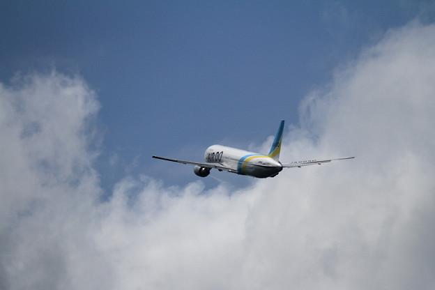 B767 北海道の翼 空へ JA98AD