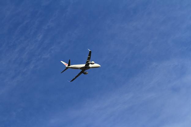 ERJ-190 FLY JAL