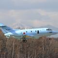 写真: U-125A 42-3022 landing