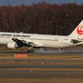 写真: B767 JAL JA602J touchdown