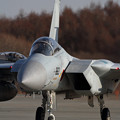 写真: F-15 203sq 帰投 (1)