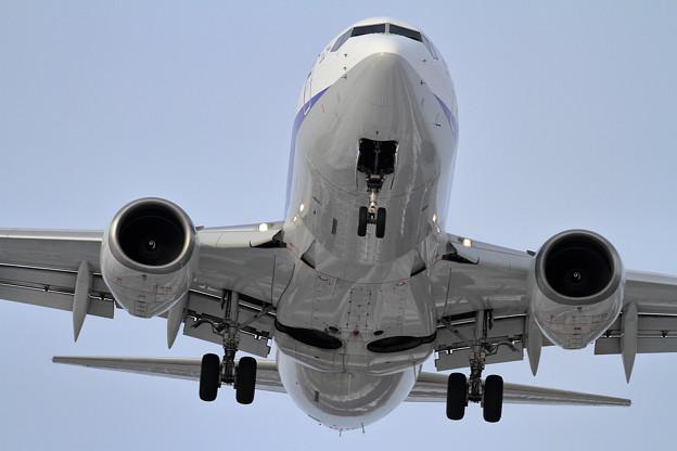 B737-881 ANA approach