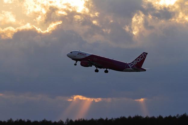 A320 Peach JA809P takeoff