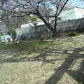写真: 2012_04010042