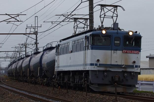 EF65 2085牽引 8685レ