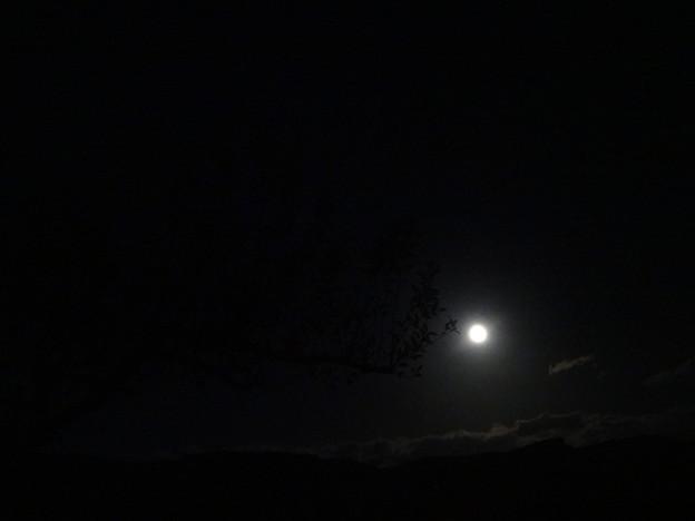 20141107 満月