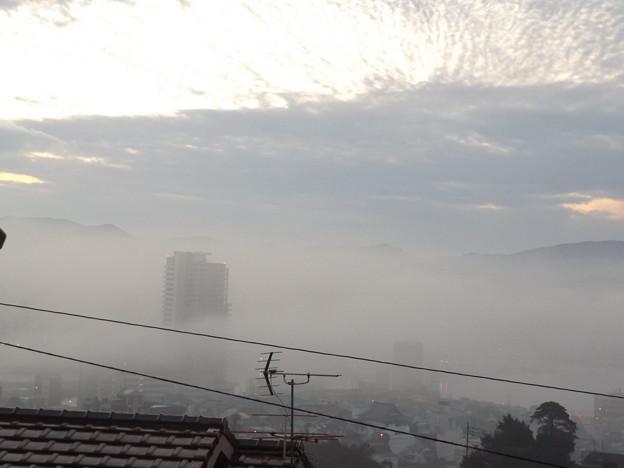 雲海 (放射霧というそうです)