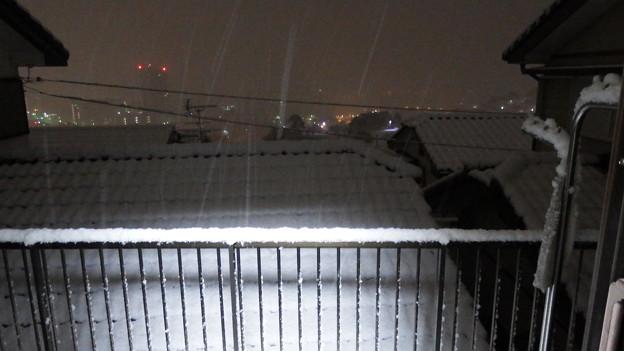 雪が降る~1