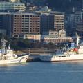 写真: 巡視船でじまと巡視船こじま