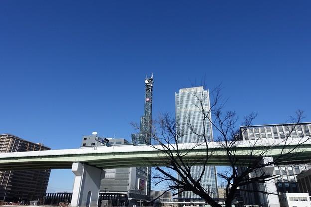 写真: DSC03062