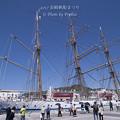 2017 長崎帆船まつり2