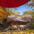 2017 富貴寺の紅葉4